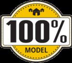 100-percent-model